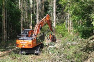 maquinaria forestal leasing